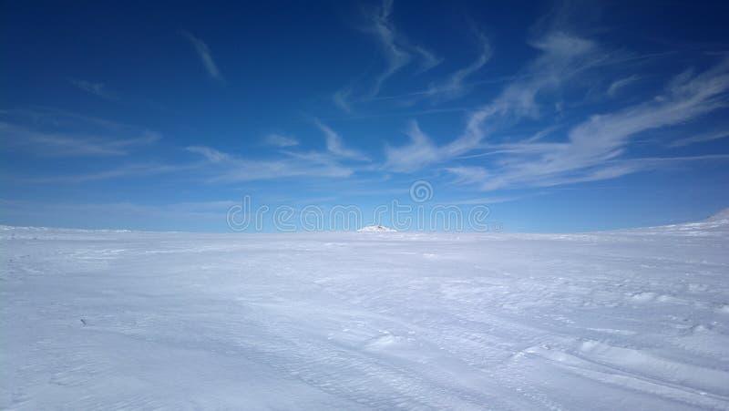 В глубоком снеге стоковая фотография