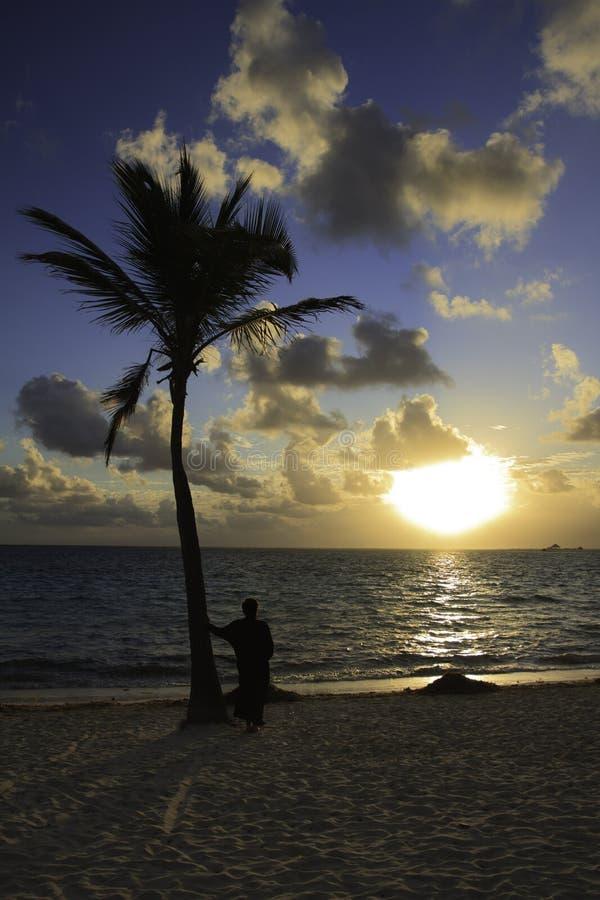 В заход солнца стоковое изображение