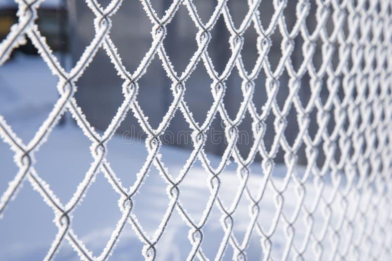 В зимнем дне, заморозок красиво покрытый на решетке металла стоковое фото