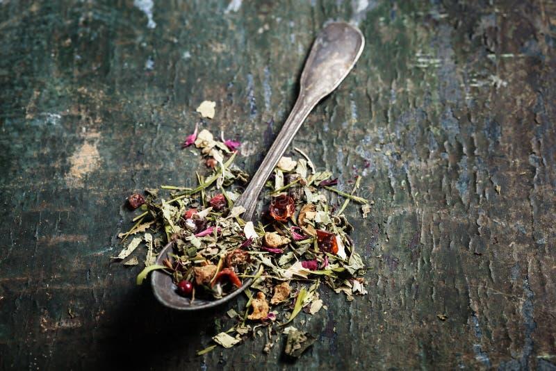 вливания horsetail фокуса equisetum чашки arvense чай стеклянного травяного naturopathy селективный стоковое изображение rf