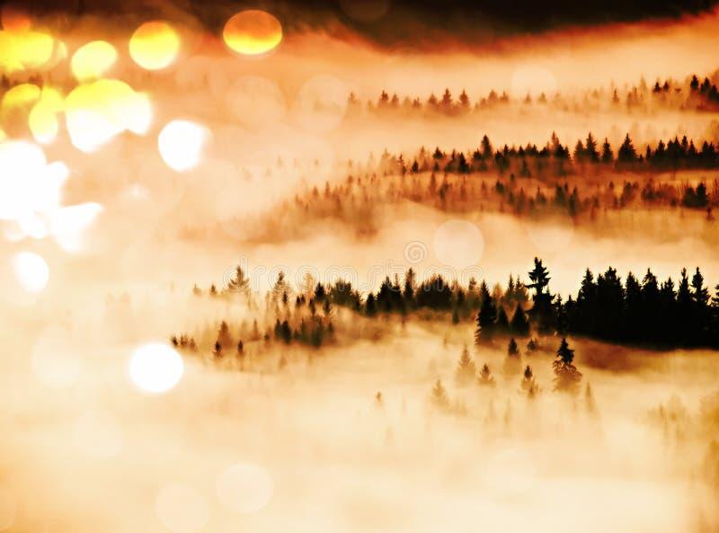 Влияние фильма Розовый рассвет в холмистом landcape Утро осени туманное в красивые холмы Пики деревьев стоковое изображение