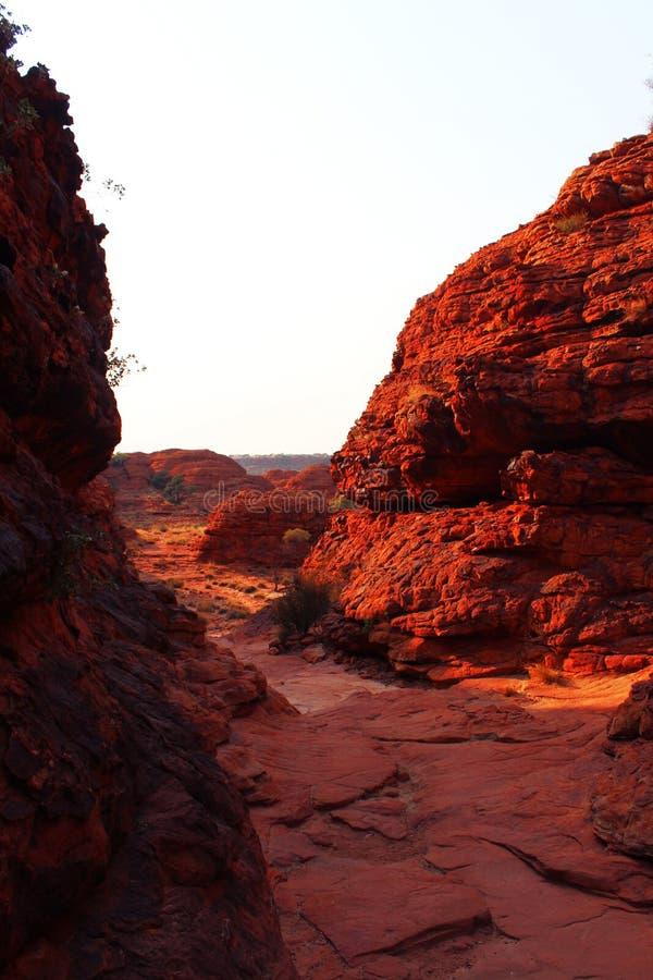 В каньон стоковые изображения