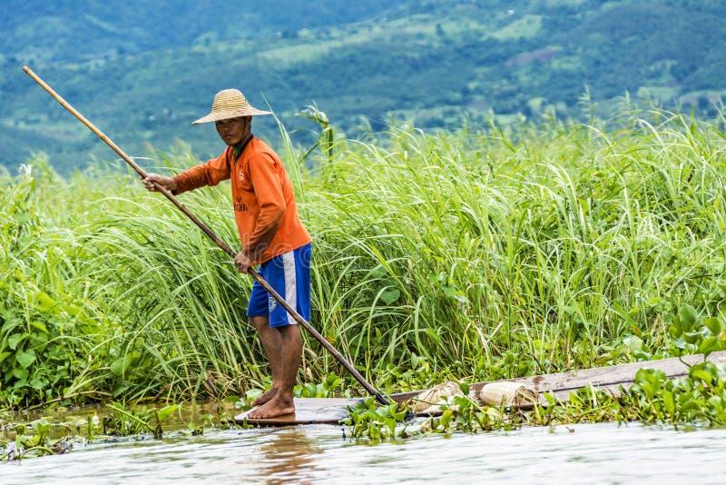 В озере tha фермер контролирует его поле в его типичном каное стоковое изображение rf