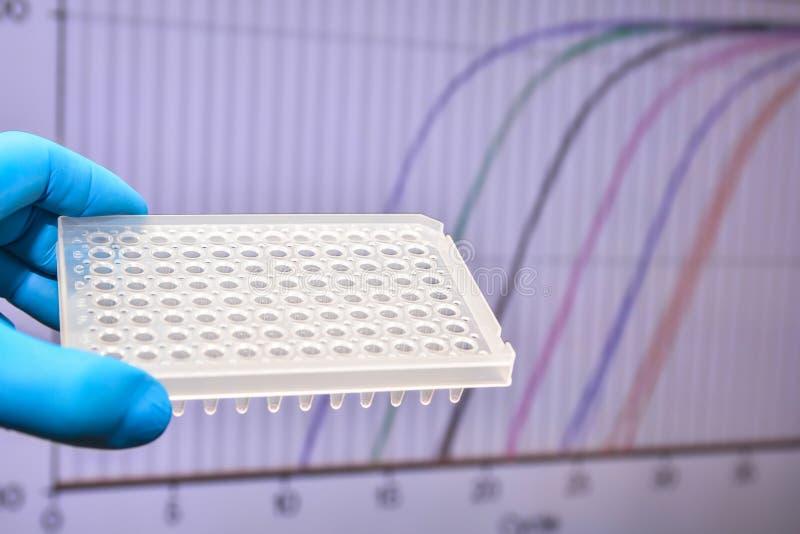 В реальном времени исследование PCR в лаборатории стоковые фотографии rf
