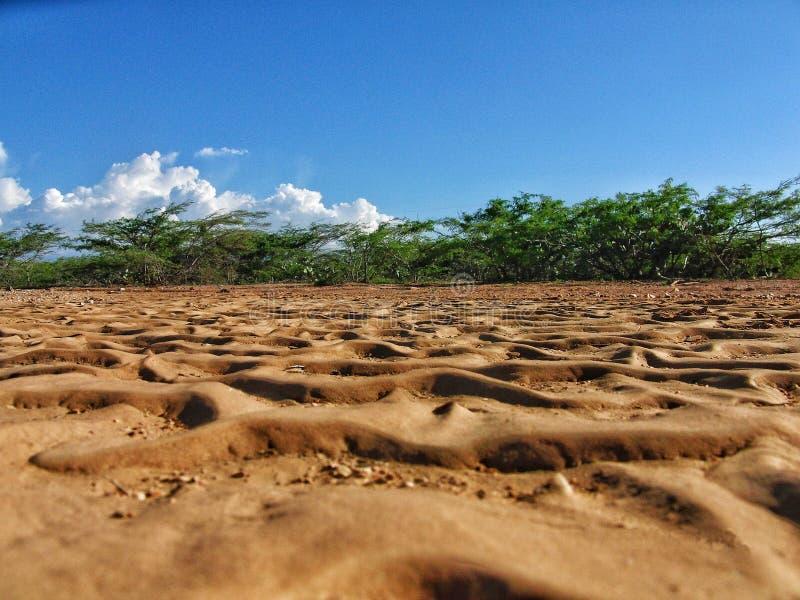 в середине колумбийской пустыни стоковое фото rf