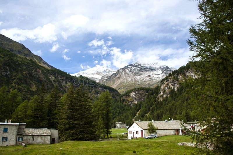 В швейцарце Альпах стоковое фото