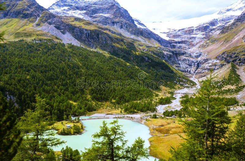 В швейцарце Альпах стоковое изображение