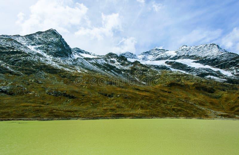 В швейцарце Альпах стоковые фото