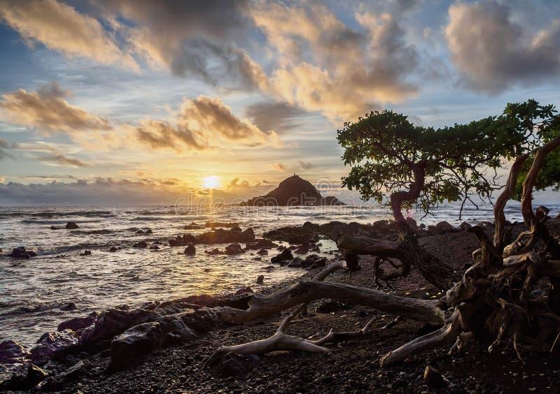 Гаваиский восход солнца на острове Мауи стоковое фото rf