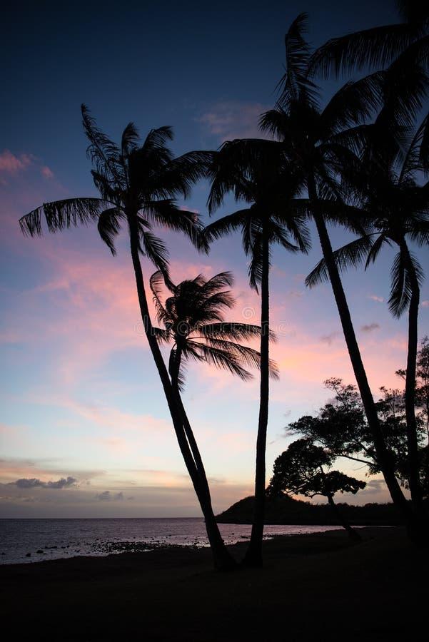 гаваиский заход солнца molokai стоковая фотография
