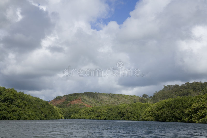 гаваиское река стоковое фото rf