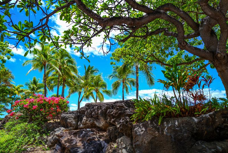 Гаваи, природа, история и архитектура стоковые фотографии rf