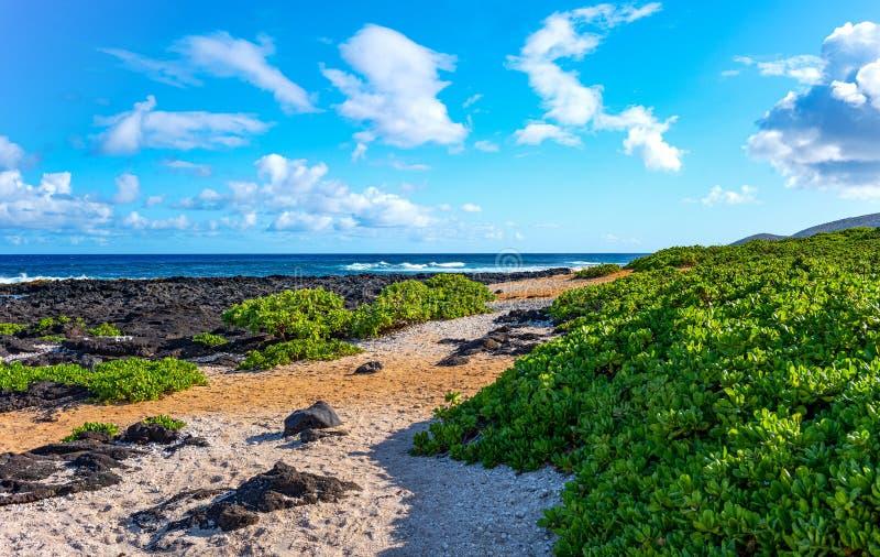 Гаваи, природа, история и архитектура стоковые фото