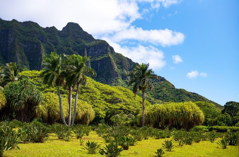 Гаваи, природа, история и архитектура стоковое изображение