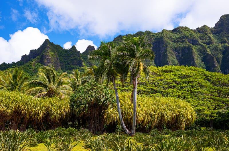Гаваи, природа, история и архитектура стоковая фотография rf