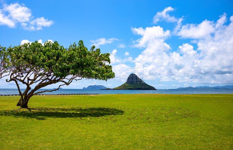 Гаваи, природа, история и архитектура стоковое изображение rf
