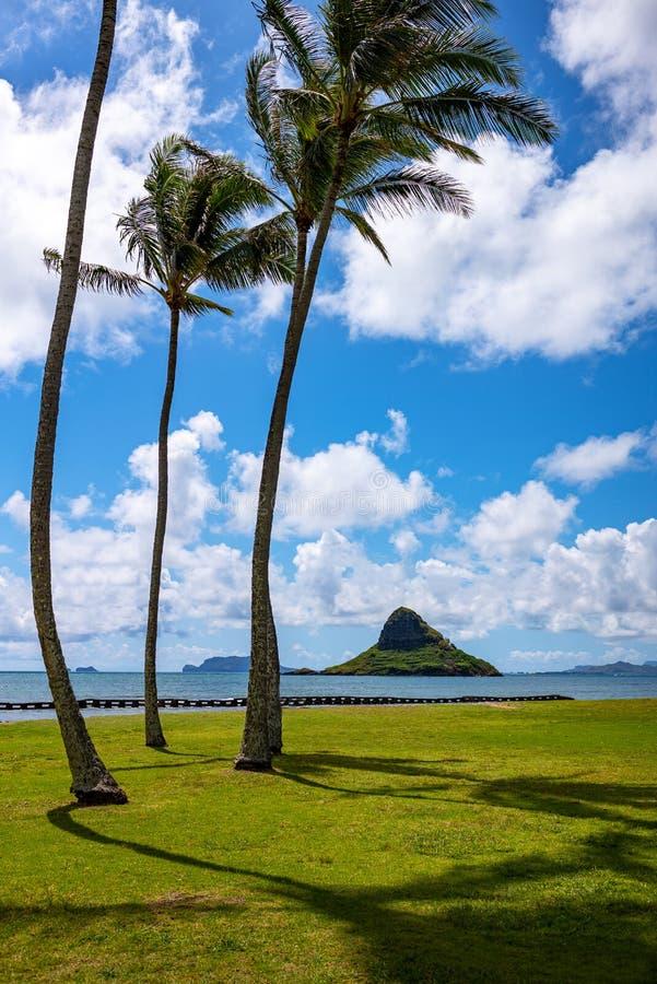 Гаваи, природа, история и архитектура стоковые изображения rf