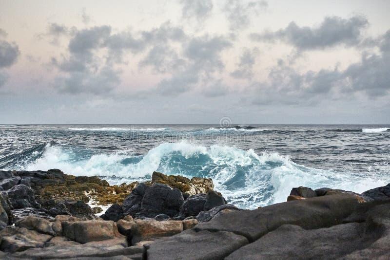 Гавайи 2019_14 стоковые фотографии rf