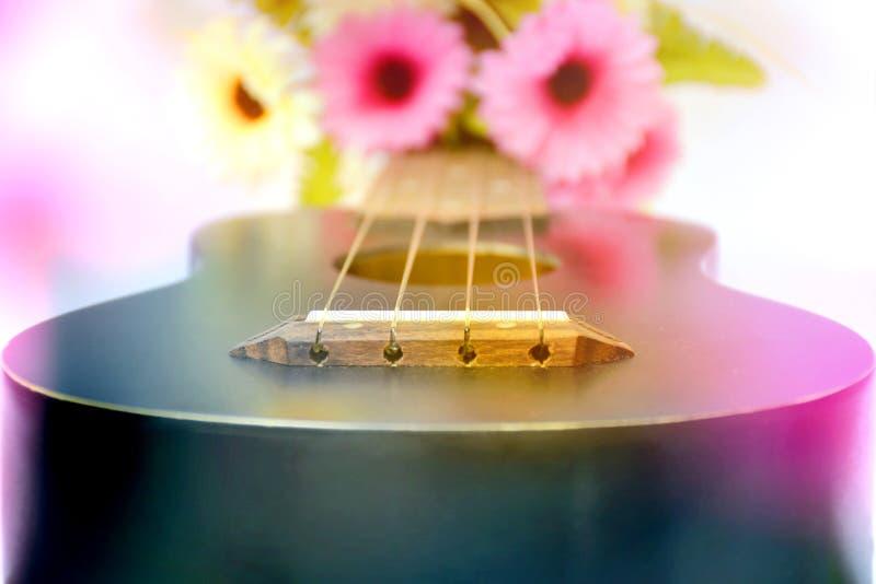 Гавайская гитара с красочным цветком стоковые фото