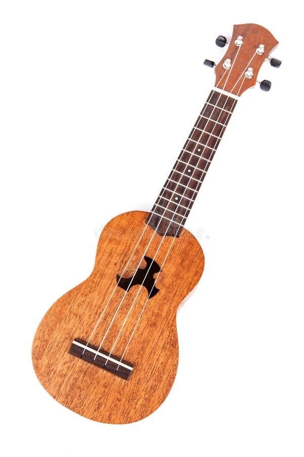 Гавайская гитара стоковая фотография
