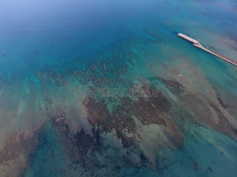 Гавань над океаном стоковое изображение