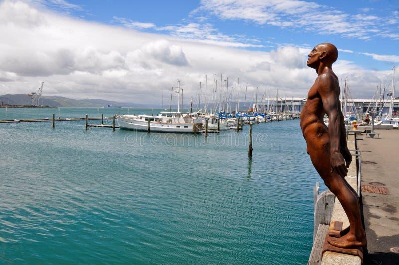 гавань новый wellington zealand стоковые фотографии rf
