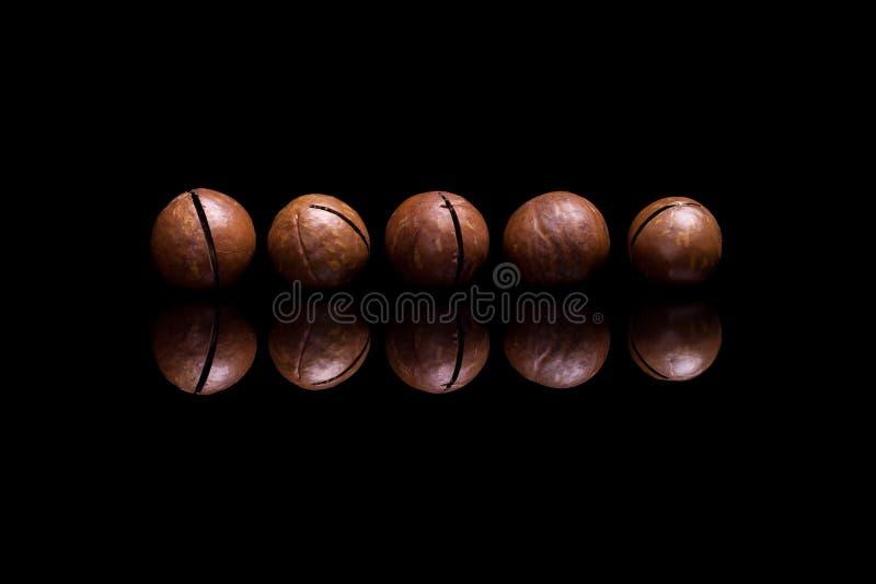 5 гаек макадамии на черной отражательной предпосылке стоковое изображение rf