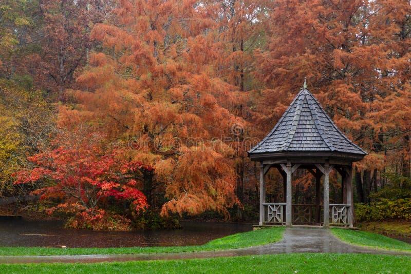 Газебо сада Gibbs окруженное величественными, который сгорели оранжевыми лысыми кипарисами и кленами стоковое фото rf