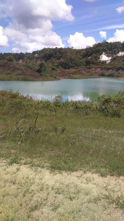 Гайана стоковое изображение rf