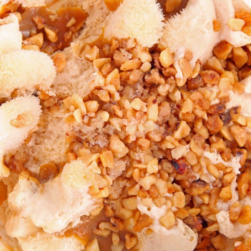 Гайки в мороженом стоковое изображение