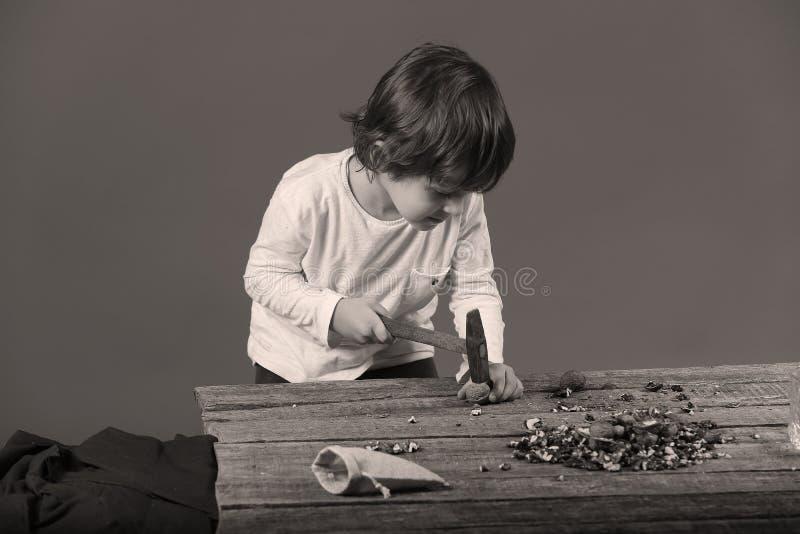 Гайки мальчика треская стоковые изображения rf