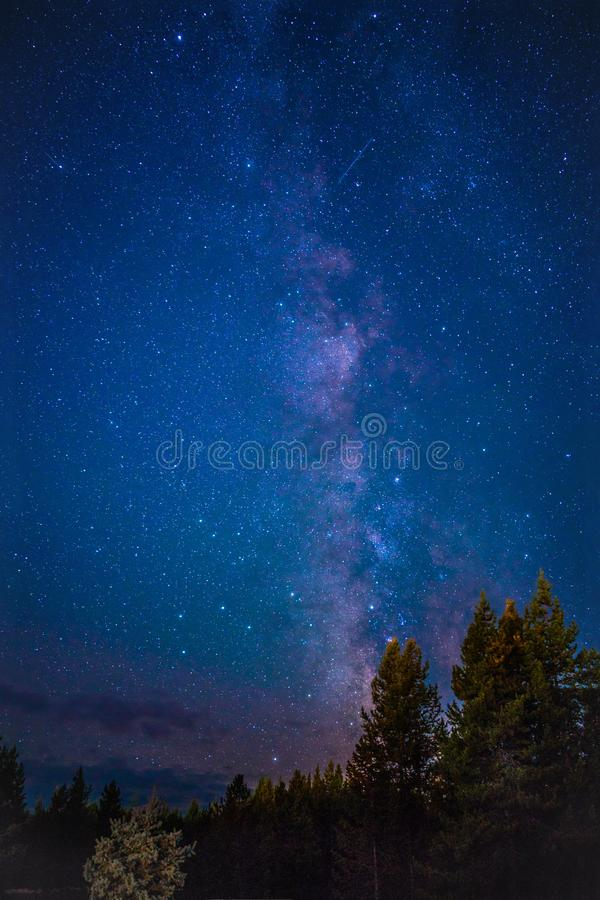 Галактика лагеря RV национального парка Йеллоустон стоковое изображение rf