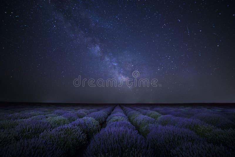 Галактика млечного пути над полем lavander стоковое фото