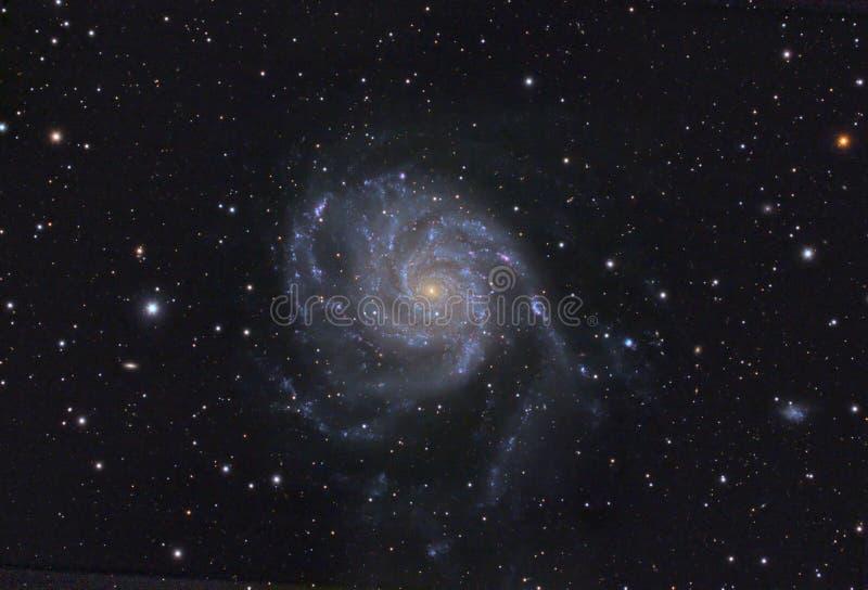 галактика m101 spigal стоковое фото rf