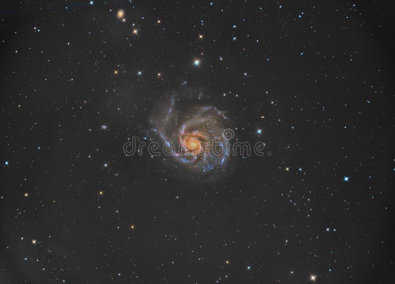 Галактика Pinwheel M101 стоковые изображения