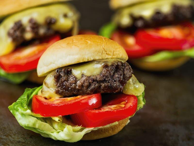 Гамбургер деревенского американского сандвича слайдера мини стоковое фото rf