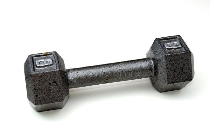 Гантель 8 фунтов стоковое изображение rf