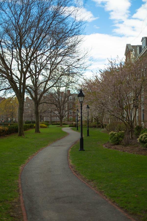 Гарвардский университет поля солдат стоковое изображение