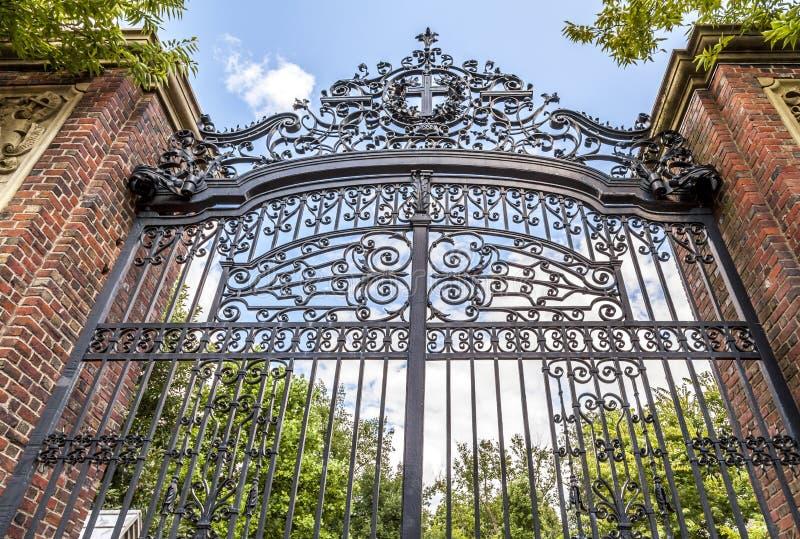 Гарвардский университет стоковая фотография rf
