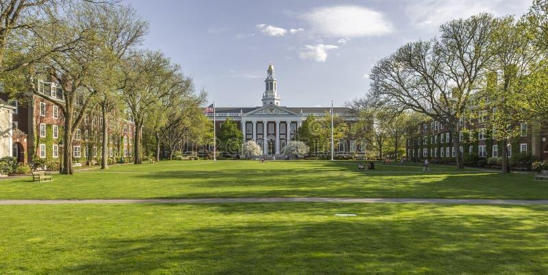 Гарвардский университет стоковое фото