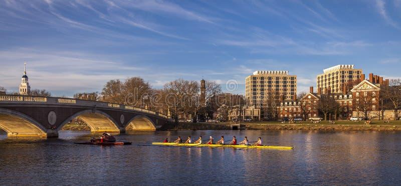 Гарвардский университет стоковая фотография