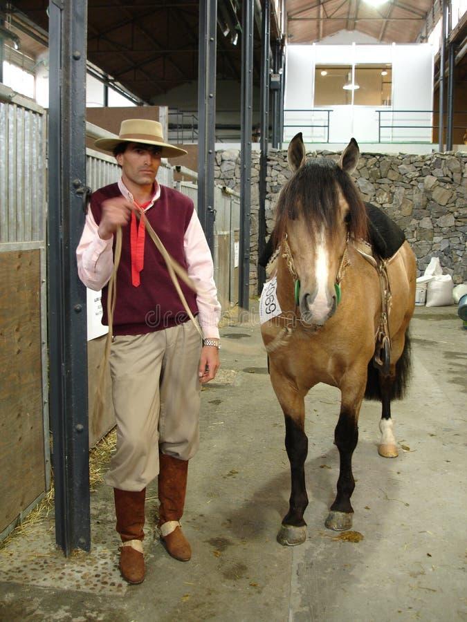 Гаучо с лошадью стоковое фото rf