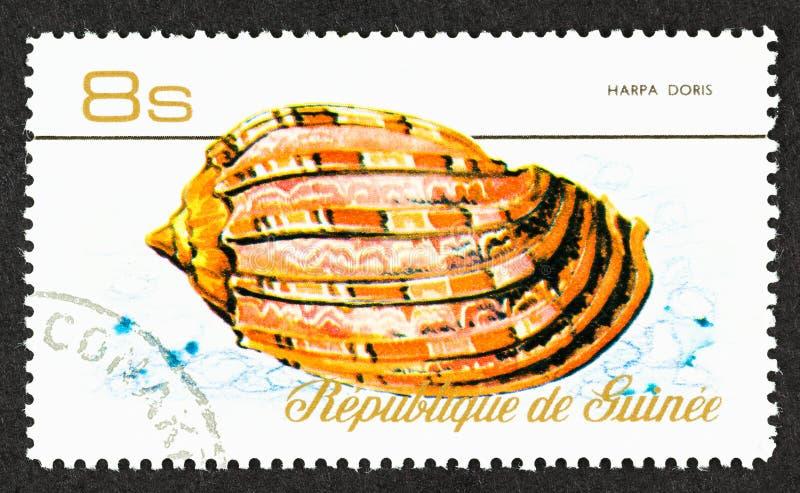 Гвинейская скальная молотка стоковое изображение rf