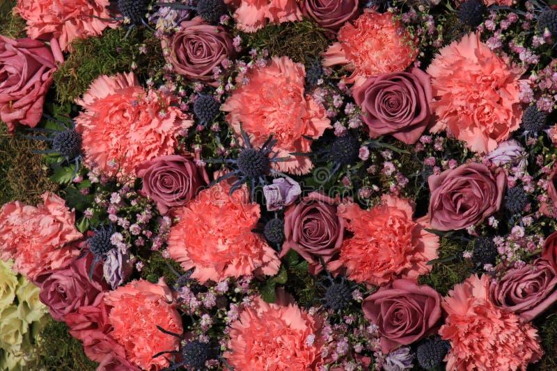 Гвоздики и розы стоковые изображения