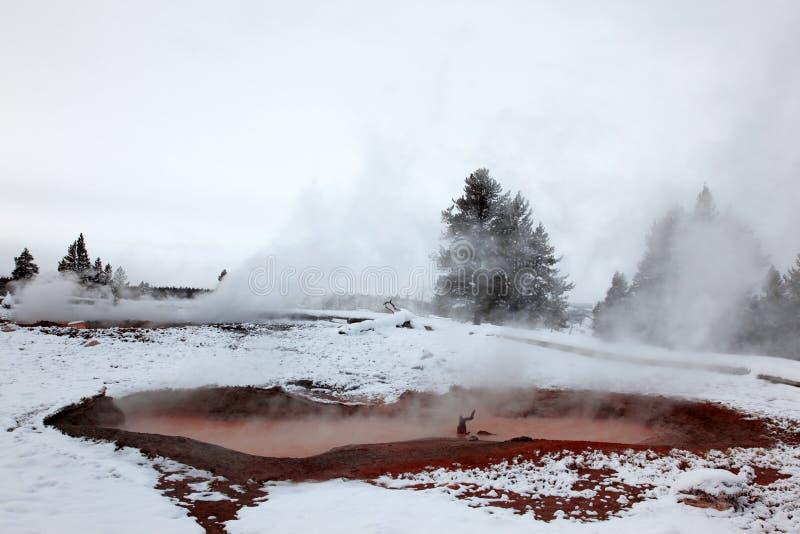 гейзеры горячий np yellowstone стоковая фотография rf