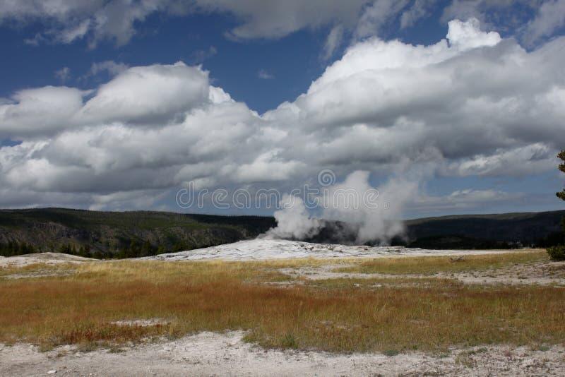 гейзер yellowstone стоковое изображение rf
