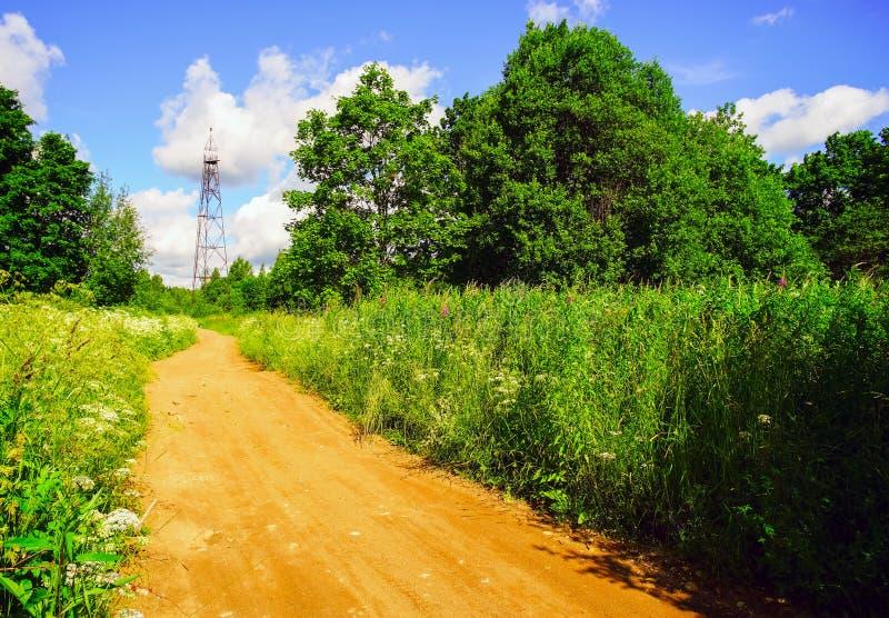 геодезическая башня Дорога в лесе стоковое изображение
