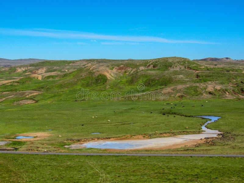 Геотермическое suvÃk ½ Krà активной области, Seltun, глобальное Geopark, геотермическая активная область в Исландии, Европе стоковое изображение
