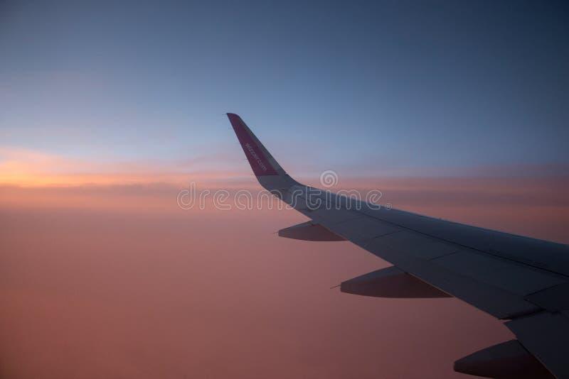 Германия - 15/06/2019: крыло компании Wizzair самолета на заходе солнца Розовое выравниваясь небо с самолетом воздуха Wizz Авиаци стоковая фотография rf