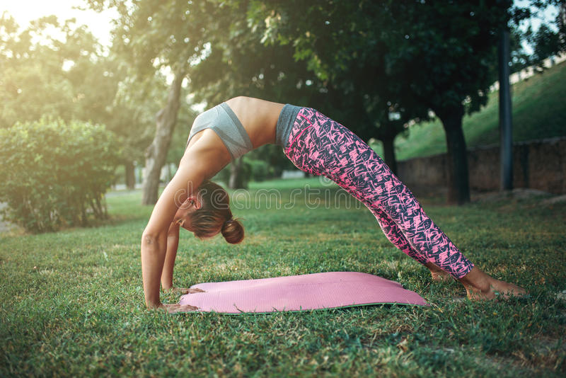 Гибкая молодая женщина, тренировка йоги в парке лета стоковая фотография